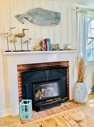 Brewster Historic District Cape Cod vacation rental - Gas fireplace