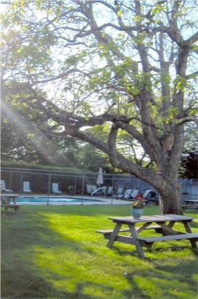 Harwichport Cape Cod vacation rental - Picnic area for outdoor eating