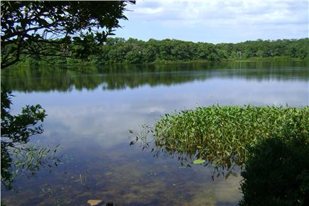 Brewster Cape Cod vacation rental - Stay here and you're steps from Cobbs pond and water access