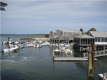 Barnstable Cape Cod vacation rental - The Harbor-Take a Whale Watch trip or charter a fishing boat
