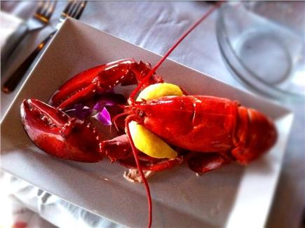 Woods Hole Woods Hole vacation rental - Hello steamed lobster!