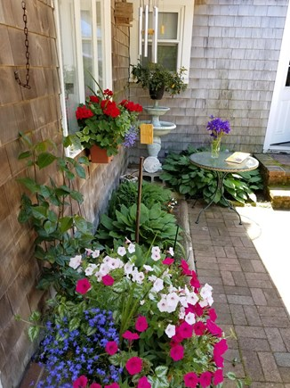Hyannis Cape Cod vacation rental - Surround yourself with nature beautiful flowers