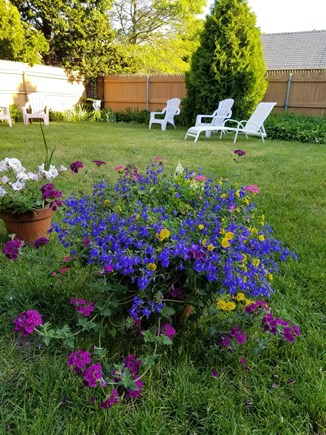 Hyannis Cape Cod vacation rental - Backyard peaceful for relaxing after a beach day all fenced in.