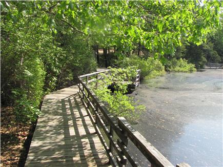 South Wellfleet Cape Cod vacation rental - Take a walk on decks built around the pond.