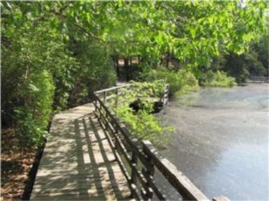 Wellfleet Cape Cod vacation rental - Stoll along boardwalk surrounding nature pond.