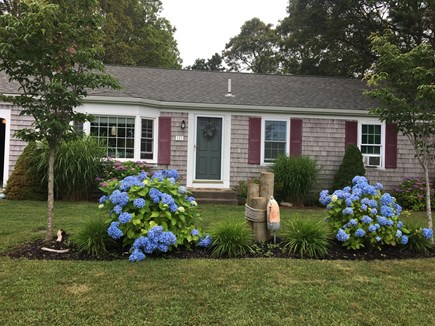 South Yarmouth Cape Cod vacation rental - Yarmouth Vacation Rental #19776