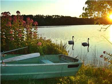 Brewster Cape Cod vacation rental - Enjoy beautiful sunset over the lake - backyard.