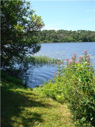 Brewster Cape Cod vacation rental - Back Patio Pond View Looking Left