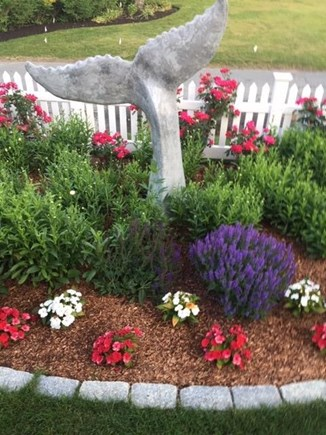 Dennis Cape Cod vacation rental - Whale's Tail and lovely colorful garden beds enhance front entry