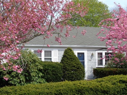 West Yarmouth Cape Cod vacation rental - 146 Bayview Street, West Yarmouth (ID 19991)