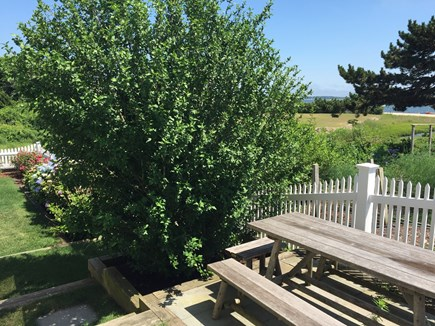 West Yarmouth Cape Cod vacation rental - The picnic table, w/gas grill, has a beautiful view of the water