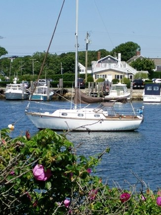 On Falmouth Harbor, Desirable  Cape Cod vacation rental - View from front of house, Sailboat on Falmouth Harbor.