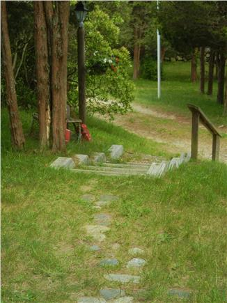 Orleans Cape Cod vacation rental - View of driveway from house shows the privacy you'll enjoy