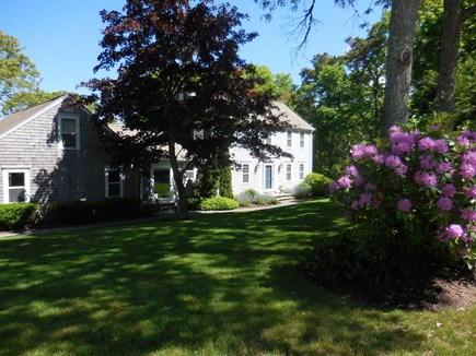 South Orleans Cape Cod vacation rental - Front yard.