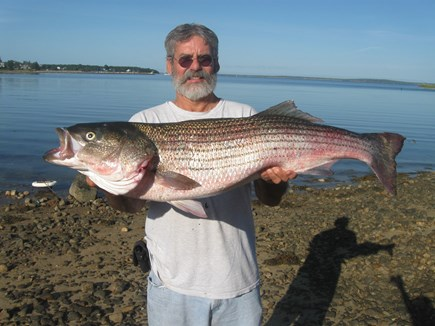 Bourne, Monument Beach Cape Cod vacation rental - Yes, you too can catch bass from the shore along the canal.