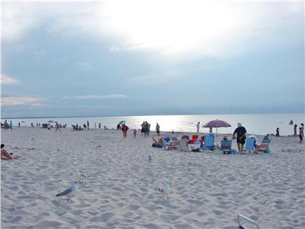 Dennis Village Cape Cod vacation rental - Dennis's beautiful Mayflower Beach, ready for family fun!