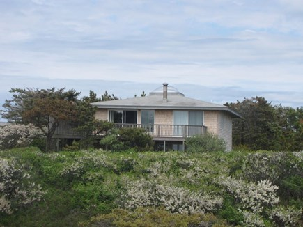 North Truro Cape Cod vacation rental - Front view of house from our conservation land across the street