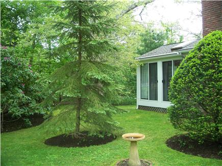 Cotuit Cape Cod vacation rental - Yard around sunroom, quiet and private
