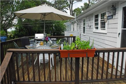Dennisport Cape Cod vacation rental - Large open deck with gas grill for steaks and fish w/ herb garden