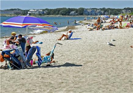 Dennisport Cape Cod vacation rental - Beautiful West Dennis Beach is just over one mile away