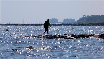 Chatham Cape Cod vacation rental - Fisherman on the jetty near our private beach.