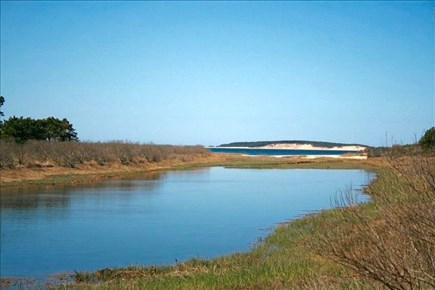 Wellfleet Cape Cod vacation rental - View as you turn into the cottage private road