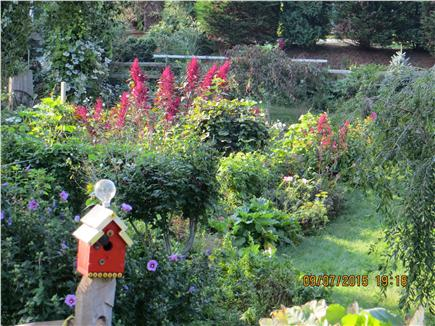 Chatham Cape Cod vacation rental - Many different gardens of interest including herb and organic veg