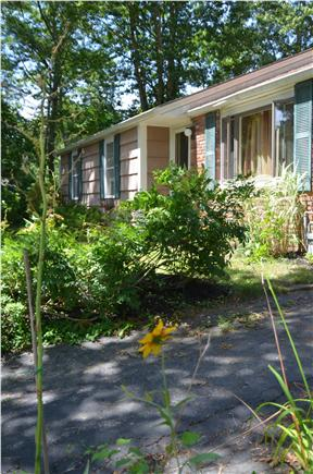 Centerville Centerville vacation rental - Centerville Vacation Rental ID 21433