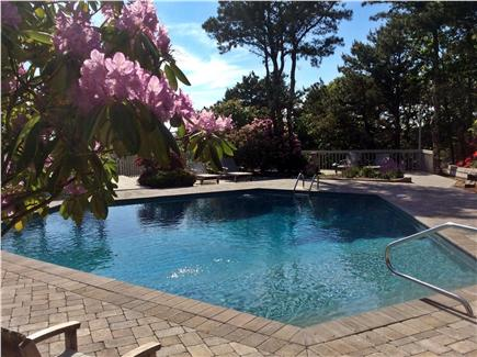 Truro Cape Cod vacation rental - Dip anyone?