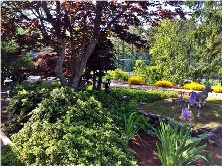 Truro Cape Cod vacation rental - Lush and breath-taking private grounds.
