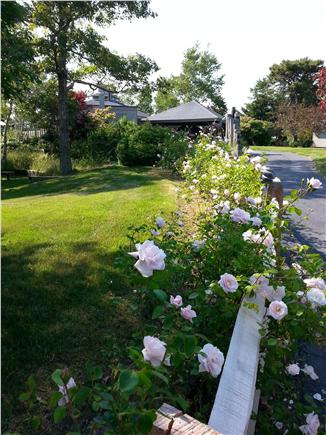 Truro Cape Cod vacation rental - Private road to Villa Sociedade
