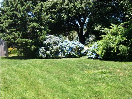 Brewster, MA Cape Cod vacation rental - Beautiful landscaping as shown in this photo of the side yard