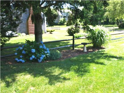Brewster, MA Cape Cod vacation rental - Quiet setting on an uncluttered cul de sac