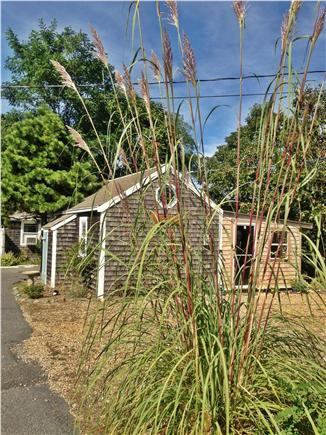 Eastham Cape Cod vacation rental - Eastham Vacation Rental ID 21567