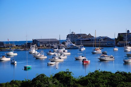 Harwich Port Cape Cod vacation rental - Enjoy a walk through Harwich Port and see the beautiful sights!