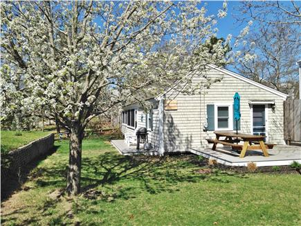 Eastham Cape Cod vacation rental - Room to run!