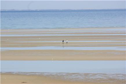 Brewster Cape Cod vacation rental - 0.7 miles to Linnell Landing Beach in Brewster