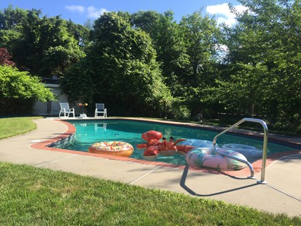 Dennis Cape Cod vacation rental - Swimming pool has a rustic, tranquil setting.