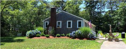 Harwich, Pleasant Lake Cape Cod vacation rental - Foundation Beds Brimming With Hydrangeas