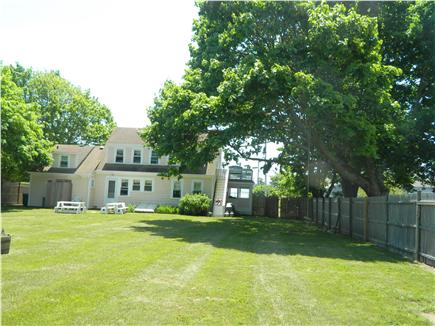Falmouth Cape Cod vacation rental - Large backyard, two picnic tables/hammock