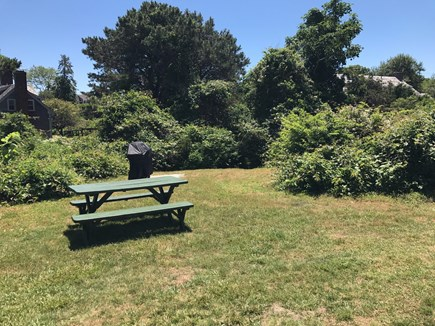 Chatham Cape Cod vacation rental - Backyard with picnic table and gas grill.