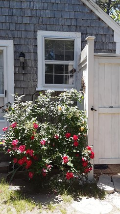 Chatham Cape Cod vacation rental - Entryway with outdoor shower.