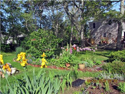 Chatham Cape Cod vacation rental - Enjoy the gardens and the hammock!