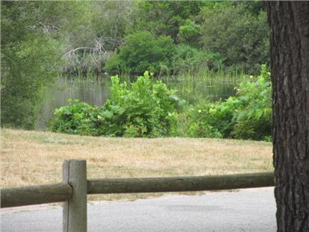 Popponesset, Mashpee Cape Cod vacation rental - View of Dean's Pond from front yard