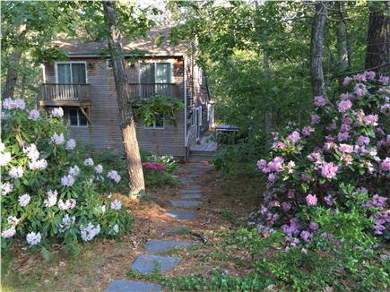 Wellfleet Cape Cod vacation rental - Wellfleet Vacation Rental ID 22169