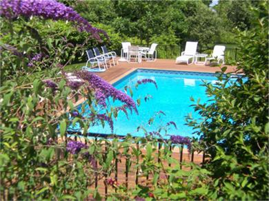 West Barnstable Cape Cod vacation rental - In ground pool has attractive plantings and teak decking