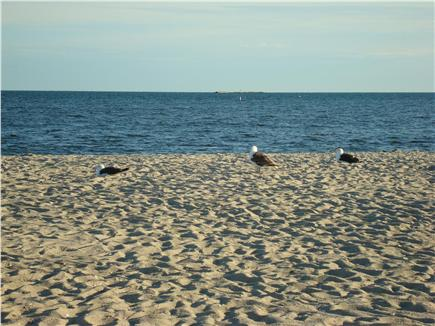 West Dennis Cape Cod vacation rental - Just 1.4 miles to West Dennis Beach