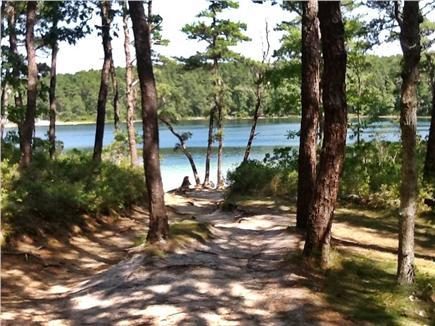 Wellfleet Cape Cod vacation rental - Tranquil Duck Pond is a walk away!