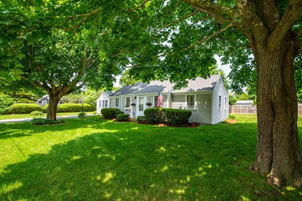 West Yarmouth Cape Cod vacation rental - Large yard (rear & sides) for family entertaining