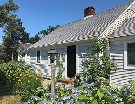 Nauset Heights (East Orleans) Cape Cod vacation rental - Tried and true for summertime at the Cape.